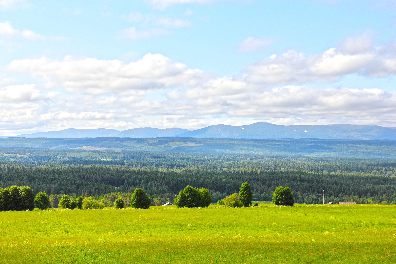 Utsikt över Fåsjön